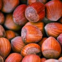 Hasselnötter i lösvikt